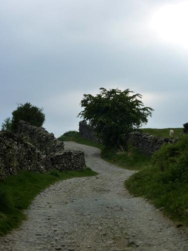 Robin Lane winds ahead