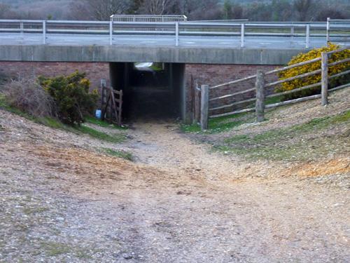 A31 underpass