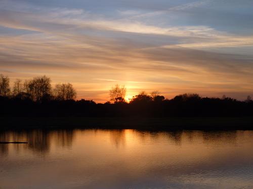 Across Ibsley Pond