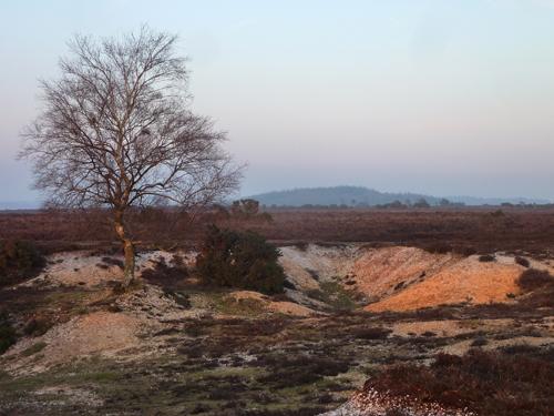 North Hollow Gravel Pit