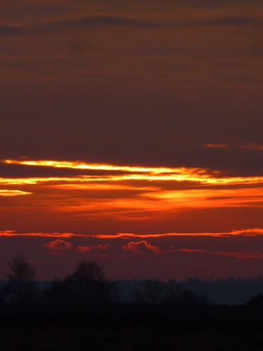 Sunset on Ibsley Common